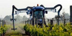Pesticides, les marchands de mort