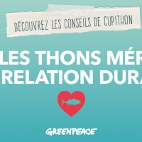 Thons cherchent relation durable