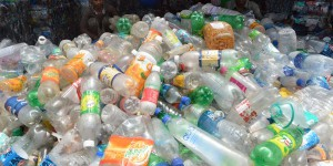 Une enzyme qui digère le plastique : la solution à la pollution ?
