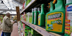Herbicide : l'autorisation du glyphosate prolongée en Europe