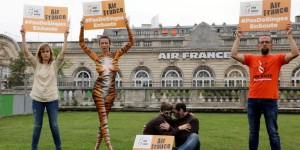 Défense animale : happening pour qu'Air France arrête le transport des singes