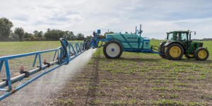 Glyphosate : en coulisses, les tractations continuent