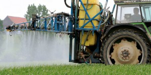 Pesticides toxiques : annulation de la condamnation de l'Etat à indemniser un agriculteur