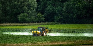 Pesticides : quelles alternatives au méthamsodium ?