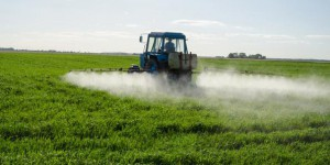 5 pesticides officiellement classés cancérogènes par l'OMS