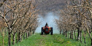 Cash investigation s'attaque aux pesticides