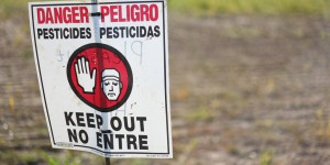 En route pour les alternatives aux pesticides