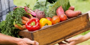 Alimentation : comment encourager les circuits courts