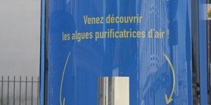 [VIDEO] Poissy mise sur le puits de carbone pour purifier son air